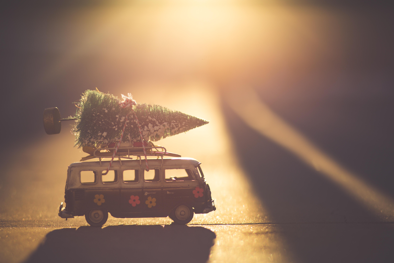navidad esparza